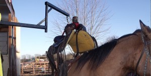 Herc-u-Lifts-Herculifts-Saddle-Lift-Lifting-Portable-Easy-Travel-Trailer-Camper-Horse-mount-easy-Saddling
